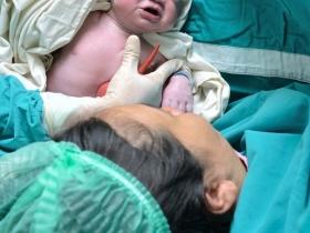 schwangerschaftsrechner befruchtung